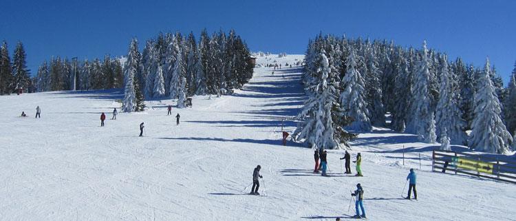 kopaonik skijalista